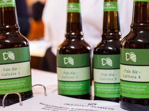 Innovativer Bier-Workshop und Romeis Brauertag: Hopfen-Versuchsbiere